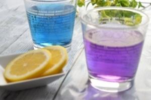 レモン汁で色が変わるマロウブルー