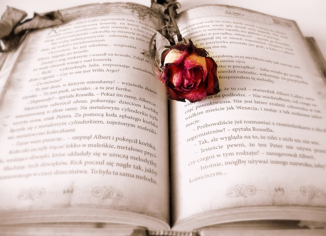 魔術書と薔薇